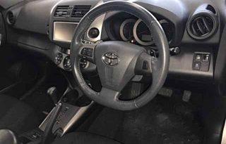 Toyota Vanguard 2010 full